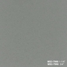 MS 7998