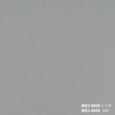 MS 8000 NANO