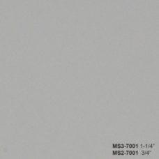 MS3-7001