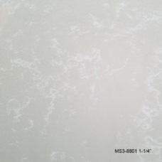 MS3-8801zoom3_M1