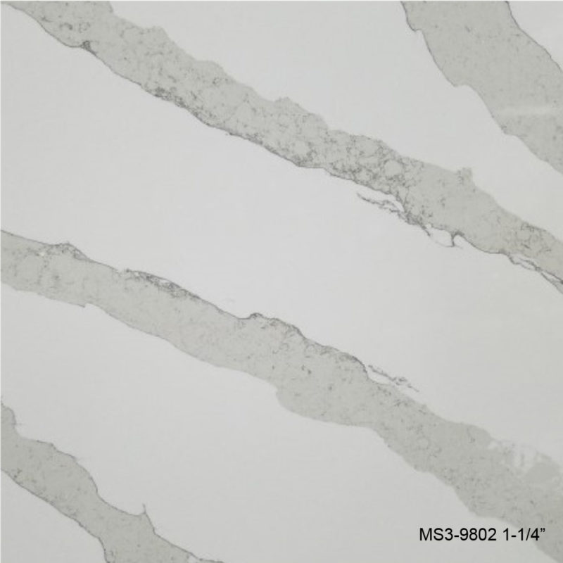 MS3-9802