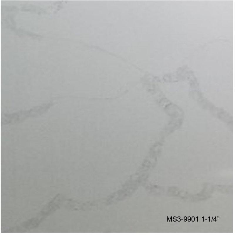 MS3-9901_P